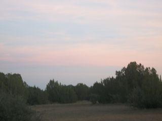ABQFALL2011 024